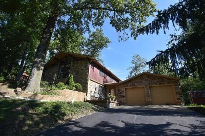 Single Family Home For Sale: 295 Taylor Blair Road