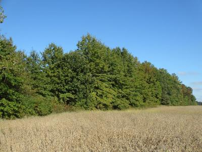 Powell Residential Lots & Land For Sale: Clark-Shaw Road