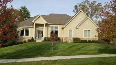 Westerville Single Family Home Contingent Finance And Inspect: 5597 Salem Drive