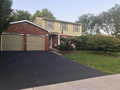 Single Family Home For Sale: 972 Cogswell Street