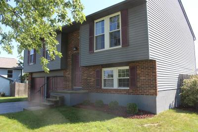 Grove City Single Family Home Contingent Finance And Inspect: 2410 Indian Creek Court