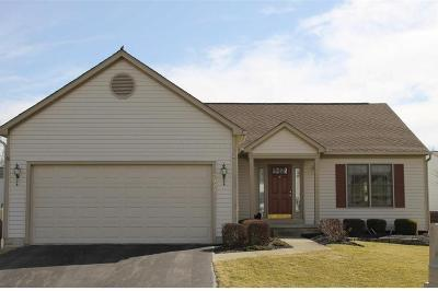 Single Family Home Contingent Finance And Inspect: 7993 Eurogrey Court