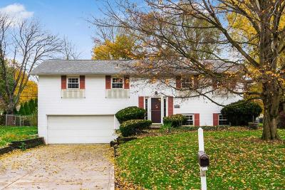 Hilliard Single Family Home For Sale: 3584 Darbyshire Drive