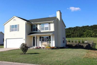 Chillicothe Single Family Home For Sale: 262 Hanover Drive