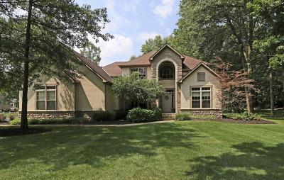Galena Single Family Home Contingent Finance And Inspect: 3840 Shagbark Trail
