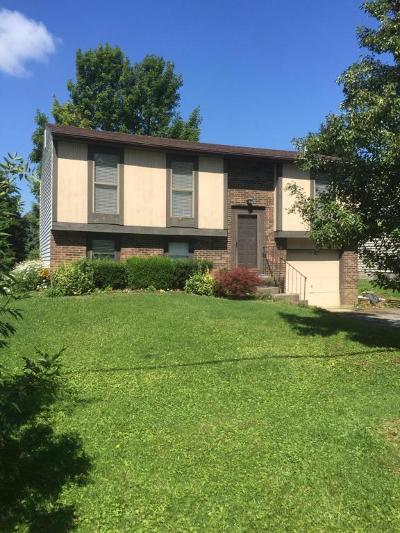 Westerville Single Family Home Contingent Finance And Inspect: 5529 Ulry Road