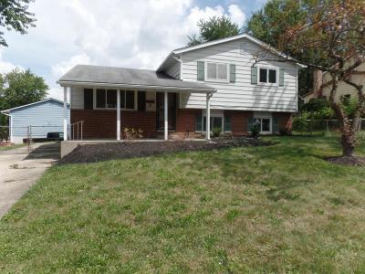 Single Family Home For Sale: 3250 Tareyton Drive