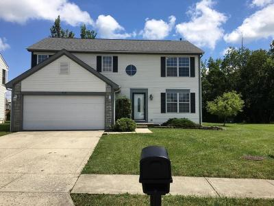 Single Family Home For Sale: 400 Windsome Drive