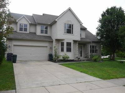 Canal Winchester Single Family Home For Sale: 8949 Hickory View Street