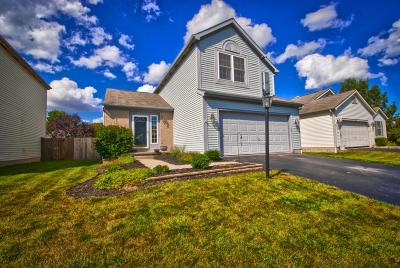 Single Family Home For Sale: 6212 Plumfield Drive
