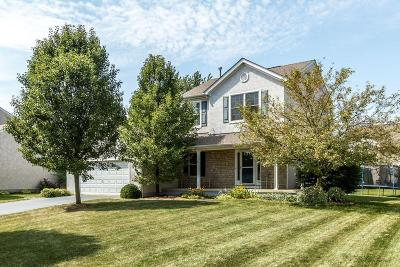 Hilliard Single Family Home For Sale: 5988 Pondview Court