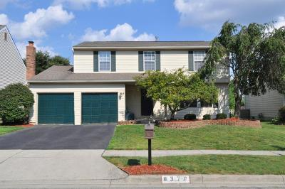 Powell Single Family Home Contingent Finance And Inspect: 8376 Gallop Drive