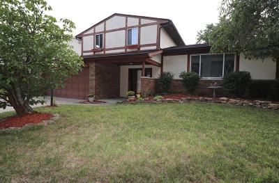 Columbus Single Family Home For Sale: 3131 Pine Valley Road
