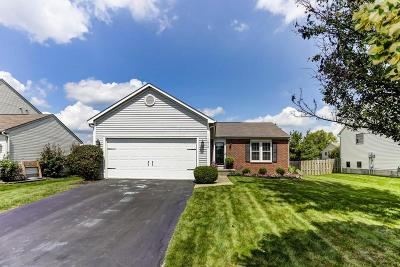 Marysville Single Family Home For Sale: 1020 Mill Park Drive
