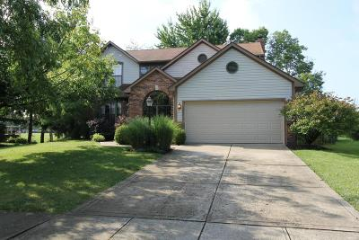 Hilliard Single Family Home For Sale: 5061 Harvest Meadow Court
