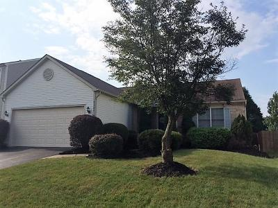 Reynoldsburg Single Family Home For Sale: 7169 Wilmar Drive