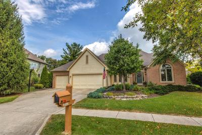 Hilliard Single Family Home For Sale: 4696 Brittonhurst Drive