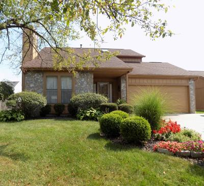 Grove City Single Family Home For Sale: 4043 Basswood Avenue