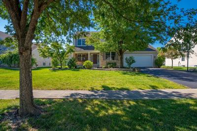Hilliard Single Family Home For Sale: 6275 Tallowtree Drive