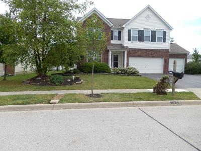 Grove City Single Family Home Contingent Finance And Inspect: 4624 Michael Place