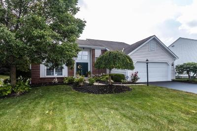 Single Family Home For Sale: 6563 Hermitage Drive
