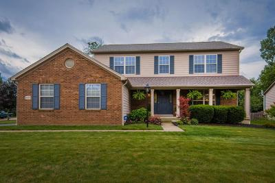 Single Family Home For Sale: 6822 Springview Drive