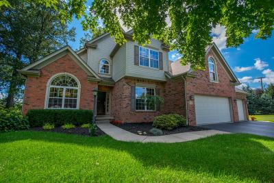 Dublin Single Family Home Contingent Finance And Inspect: 7635 Quetzal Drive