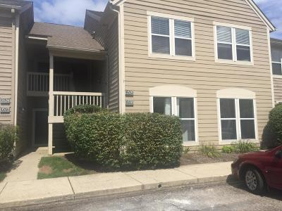 Hilliard Condo For Sale: 3518 Fishinger Mill Drive