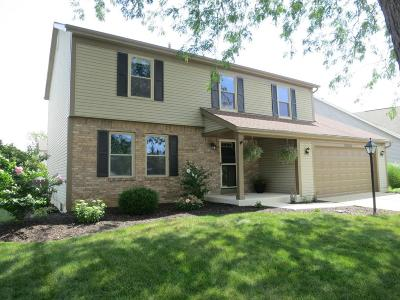Hilliard Single Family Home For Sale: 3054 Serpentine Drive