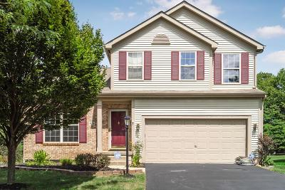 Single Family Home For Sale: 513 Streamwater Drive