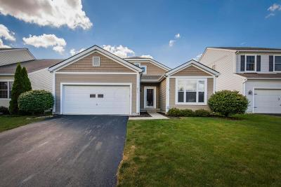 Single Family Home For Sale: 813 Holly Farms Drive