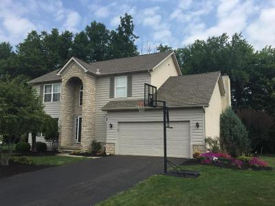 Powell Single Family Home Contingent Finance And Inspect: 192 Longmeadow Court