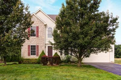 Delaware Single Family Home For Sale: 633 Meadows Drive