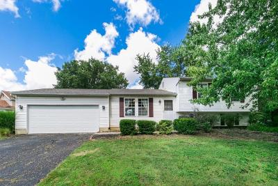 Powell Single Family Home Contingent Finance And Inspect: 1772 Bierstad Drive