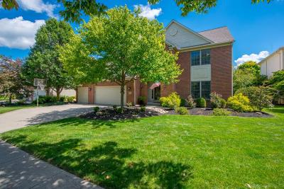 Dublin Single Family Home Contingent Finance And Inspect: 7676 Quetzal Drive