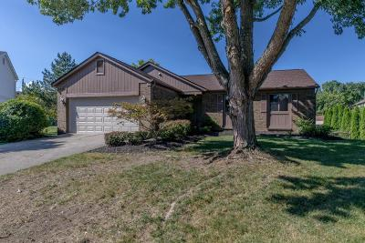 Powell Single Family Home Contingent Finance And Inspect: 2489 Shillingham Court