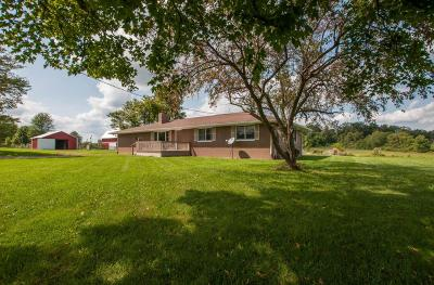 Single Family Home For Sale: 3990 Old Columbus Road