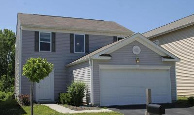 Single Family Home For Sale: 1545 Wales Place