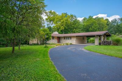Franklin County, Delaware County, Fairfield County, Hocking County, Licking County, Madison County, Morrow County, Perry County, Pickaway County, Union County Single Family Home For Sale: 4396 Hanna Hills Drive