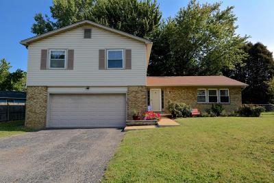Reynoldsburg Single Family Home For Sale: 144 Bristol Drive SW