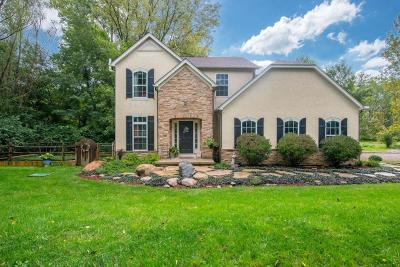 Delaware County, Franklin County, Union County Single Family Home For Sale: 6043 Olentangy River Road