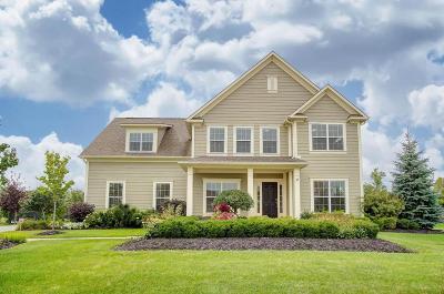 Dublin Single Family Home For Sale: 7173 Cabernet Court