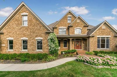 Pickerington Single Family Home Contingent Finance And Inspect: 13872 Paragon Drive
