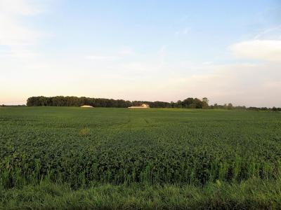 Centerburg Residential Lots & Land Contingent Finance And Inspect: 14140 Dutch Cross Road