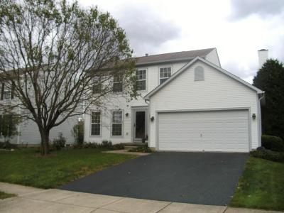 Single Family Home For Sale: 2862 Pheasant Field Drive