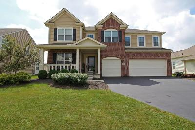 Powell Single Family Home For Sale: 4769 Creek View Court