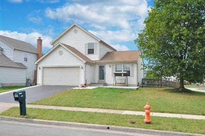 Single Family Home For Sale: 5873 Rothrock Court