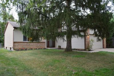 Powell Single Family Home Contingent Finance And Inspect: 8734 Blessing Drive