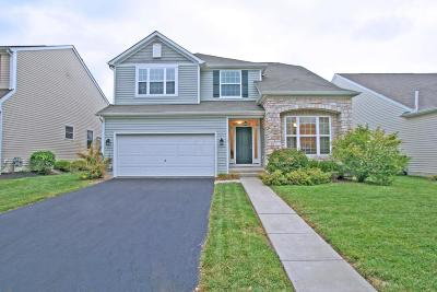 Dublin Single Family Home For Sale: 5396 Winters Run Road