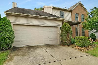 Worthington Single Family Home Contingent Finance And Inspect: 1367 Boswall Drive